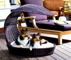 bedroom archaiccomely luxury fancyt designer dog beds fancy