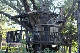 famous tree houses famous st louis park treehouse to be taken down knight errant
