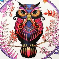 101 Best Coloring Owls Images On Pinterest Coloring Books Adult Owl Coloring Ideas