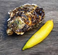 cuisiner simplement huitre au citron caviar ou comment sublimer quotidien simplement