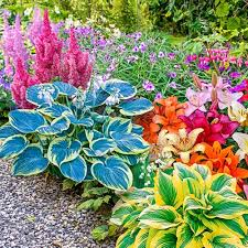 81 best garden ideas images on pinterest plants flowers and