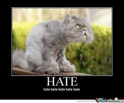 Hate Meme - hate meme 28 images haters gonna hate memes 21 best images