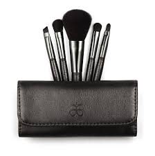 profound feline review arbonne travel makeup brush set