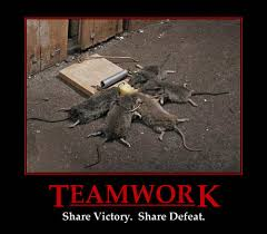 Team Work Meme - teamwork share victory share defeat 4chan lover meme and