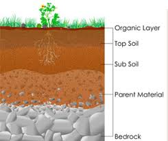 types of soil found in backyard gardens and how to amend it