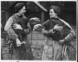 166 best vintage thanksgiving picture images on vintage