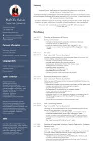 director of operations resume director of operations resume sles visualcv resume sles