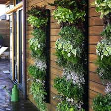 creative ways to plant a vertical garden how make living wall rain