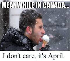 Canada Memes - yes it s ice cream best meanwhile in canada memes words