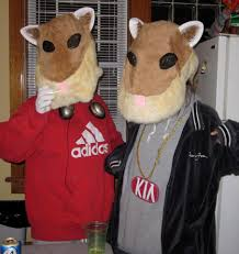 halloween hamster costume kia soul hamsters collegehumor post
