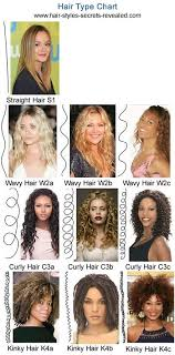 what is kanekalon hair types chart best 25 natural hair type chart ideas on pinterest hair type