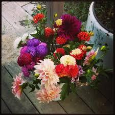 farm fresh flowers farm fresh flowers best flower 2017