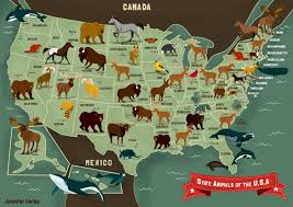 Images Of Usa Map by State Animals Of The Usa Map Jennifer Farley Illustration U0026 Design