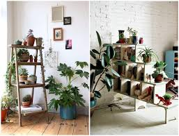 awesome indoor plant decor contemporary interior design ideas