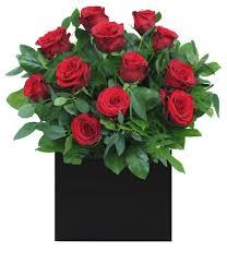 christmas flowers christmas flowers christmas flowers dublin christmas flower