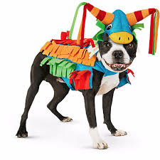 petco dog halloween costumes 2016 popsugar pets