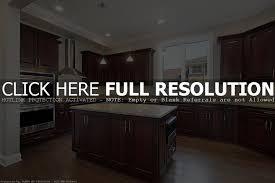 Dark Wood Cabinet Kitchens Dark Wood Cabinets Kitchen Home Decoration Ideas