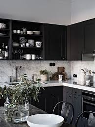 black cabinet kitchen ideas 90 best black and white kitchens images on white