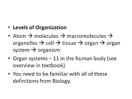 Human Anatomy Terminology Major Themes Of Anatomy U0026 Physiology Anatomical Terminology Ppt