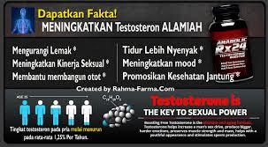 jual obat anabolic rx24 asli di indonesia harga murah rahma