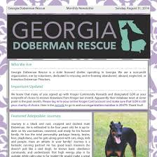 chester south carolina byb puppymill bust georgia doberman rescue