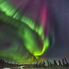 when to see northern lights in alaska northern lights north america gondwana ecotours