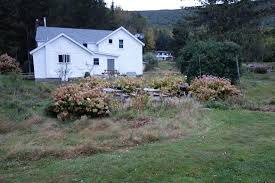 Catskills Bed And Breakfast View Of Spruceton Inn From Orchard Picture Of Spruceton Inn A