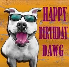 the 25 best happy birthday dog meme ideas on pinterest birthday