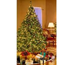 bethlehem lights pre lit tree qvc