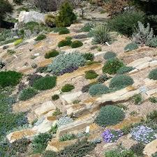 rock garden images u2013 upsite me
