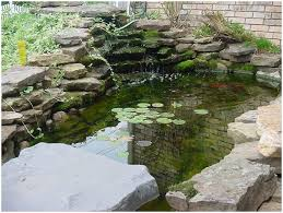 backyards impressive exteriors small backyard fish pond ideas