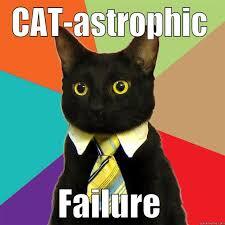 Sassy Cat Meme - business cat memes quickmeme