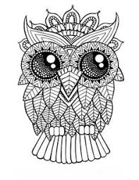 coloring page for adults owl owl coloring pages for adults coloring pages