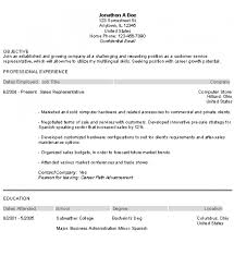Resume Purpose Statement Examples by 28 Mission Statement Examples For Resume Computer Support