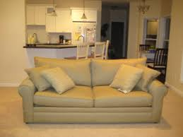 Colored Leather Sofas with Light Colored Sofa With Little Kids Who Has That