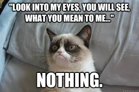 I Got My Eyes On You Meme - look into my eyes you will see what you mean to me no grumpycat