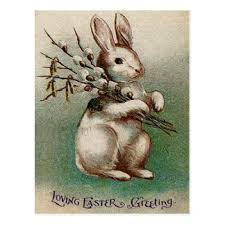 vintage rabbit vintage rabbit postcards zazzle