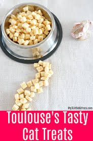 easy cuisine toulouse toulouse s tasty cat treats my 3 kittens