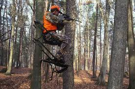 top 8 fundamental setup tips for climbing tree stands