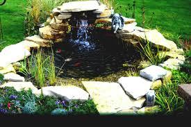 beautiful garden pond with designs dazzling water plants also