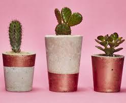 tall copper concrete planter cactus succulent u2013 hi cacti