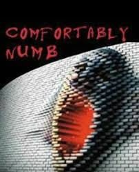 Comfortably Numb Cover Band Pink Floyd Comfortably Numb Favorite Tracks Cd Covers