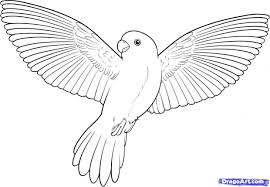 pencil coloring pages simple pencil drawings of flying birds