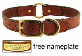 Comfortable Dog Collar 15 Answers What Are The Best Dog Collars Quora