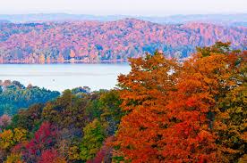 steve photo north michigan fall color october 9
