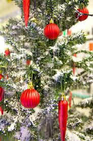 15 best christmas trees images amazing christmas trees