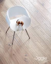 Laminated Flooring South Africa Oggie Flooring Linkedin