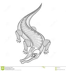 hand drawn zentangled crocodile for coloring pages stock