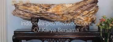 petrified wood indonesia petrified wood wholesale
