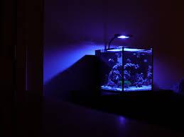 sb reef lights review sb reeflights sbox sprite vs nanobox tide mini vs reef breeders